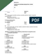 ROTEIRO eixo -ANATOMIA 2014-1.pdf