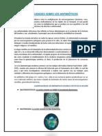 GENERALIDADES SOBRE ANTIBIÓTICOS.docx