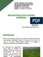 BIOCONTROLE DE PLANTAS DANINHAS.ppt