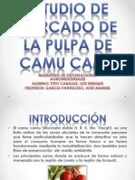 ESTUDIO DE MERCADO DE LA PULPA DE CAMU.pptx
