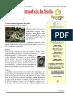 Boletin Virtual 1.pdf