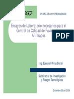 Rivas.pdf