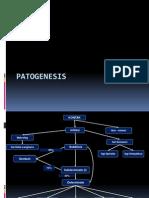 Patogenesis Morbus Hansen