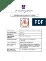 Srw650 (Muhammad Amirul) Report