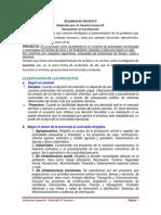 RESUMEN DE PROYECTOS (5).docx