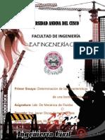 Ensayo N 1.docx
