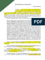 AULA 2 - PROCESSO DO TRABALHO-Annotated.pdf