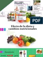 Efecto de la dieta y cambios nutricionales1.pptx