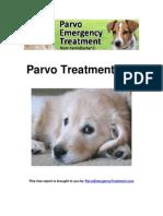 Parvo Treatment 101