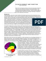 Child Brain Development and Function