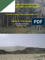 __DSh13131112c Contam Amb Arica p Arica y Putre datos nuevos.ppt