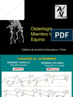 teomtequino-110826124322-phpapp02.ppt