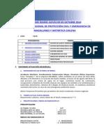 Informe Diario ONEMI MAGALLANES 09.10.2014.pdf