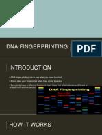 dna fingerprinting jh bazemore