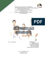 ATENCION PRIMARIA ALEJANDRINA.doc