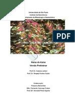 Juliani_Curso_Metamorficas_USP.pdf