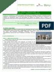 ESLC CLC NG6 DR1 Ficha1 Construcao Arquitectura