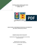 Memoria Roberto Yany.pdf