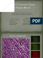 project connective tissue   blood group c--final 9-23-14