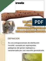 LEISHMANIASIS y leptospira.pptx