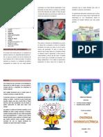 ENERGIA HIDROELECTRICA.docx