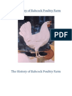 The History of Babcock Poultry Farm