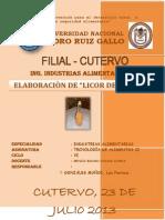 PROYECTO DE LICOR DE CAMOTE.docx