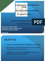ELECTRO BIEN.pptx