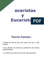procariotas_y_eucariotas.ppt