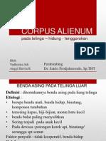 Corpus-Alienum