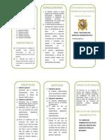 TRIPTICO SEMINARIO DERECHO ADMINISTRATIVO.docx