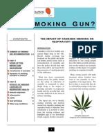A_Smoking_Gun.pdf