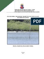 Discertação Tais Pelegrine.pdf