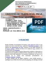 CRIADERO DE TILAPIA ROJA..pptx