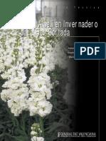 Cultivo alhelí flor cortada.pdf