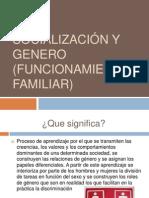 Socialización y genero (Funcionamiento familiar).pptx
