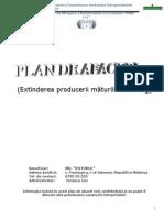 Model Plan de Afaceri Completat