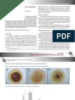 Influência da Polaridade do solvente na extração do lapachol.pdf