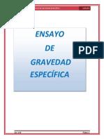 6 GRAVEDAD ESPECIFICA.docx