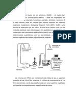 relatorio hplc1 (nosso).docx