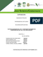 FACTOR DE EXPANSIÓN DEL GAS.docx