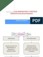 BIOSINTESIS DE AMINOACIDOS Y PROCESOS BIOSINTÉTICOS RELACIONADOS.pptx