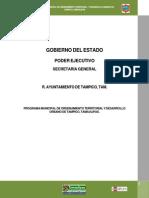 Programa_municipal_tampico.pdf