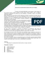 Practica 2determinacion del CH3OOH.docx