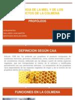 PROPOLEOS GALLARDO-MONTAGNA.pptx