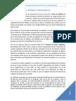 Historia y Antecedentes.docx
