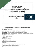 PROGRAMA DE ATENCIÓN A ENFERMERÍA PAE.pptx