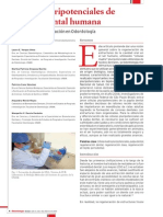 celulas-pluripotenciales-pulpa-dental-humana.pdf