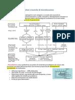Microfoni e tecniche di microfonazione.pdf