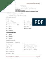 practicon1-130630132543-phpapp01.docx